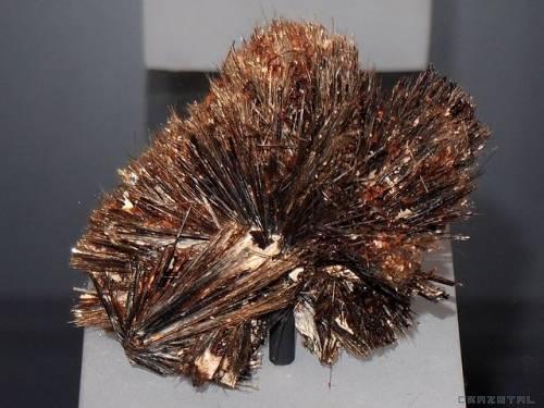 propriétés et photos pierre astrophyllite