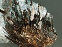 astrophyllite-photo-1