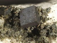 cafarsite-photo-1