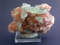 creedite-photo-8