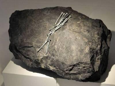 Comment identifier les pierres cristaux et minéraux? www.pierresdesante.com