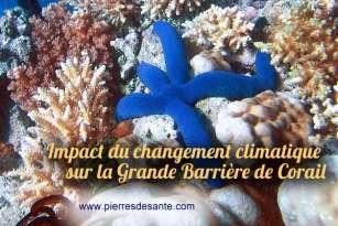 Impact du changement climatique sur la Grande Barrière de Corail